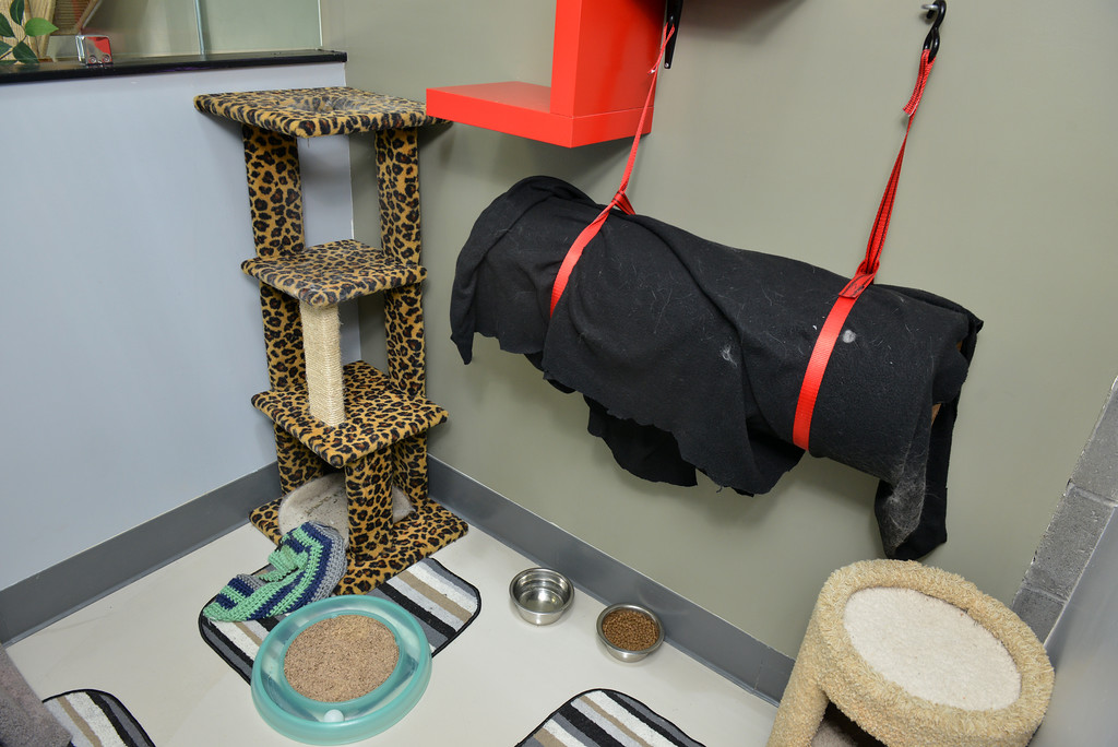 Mission: Cats Cat Cave Play Area