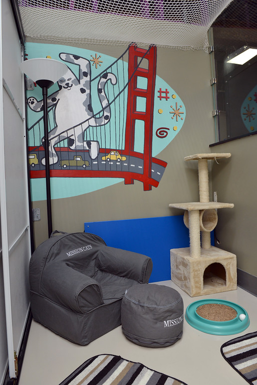 Mission: Cats Study Room Play Area