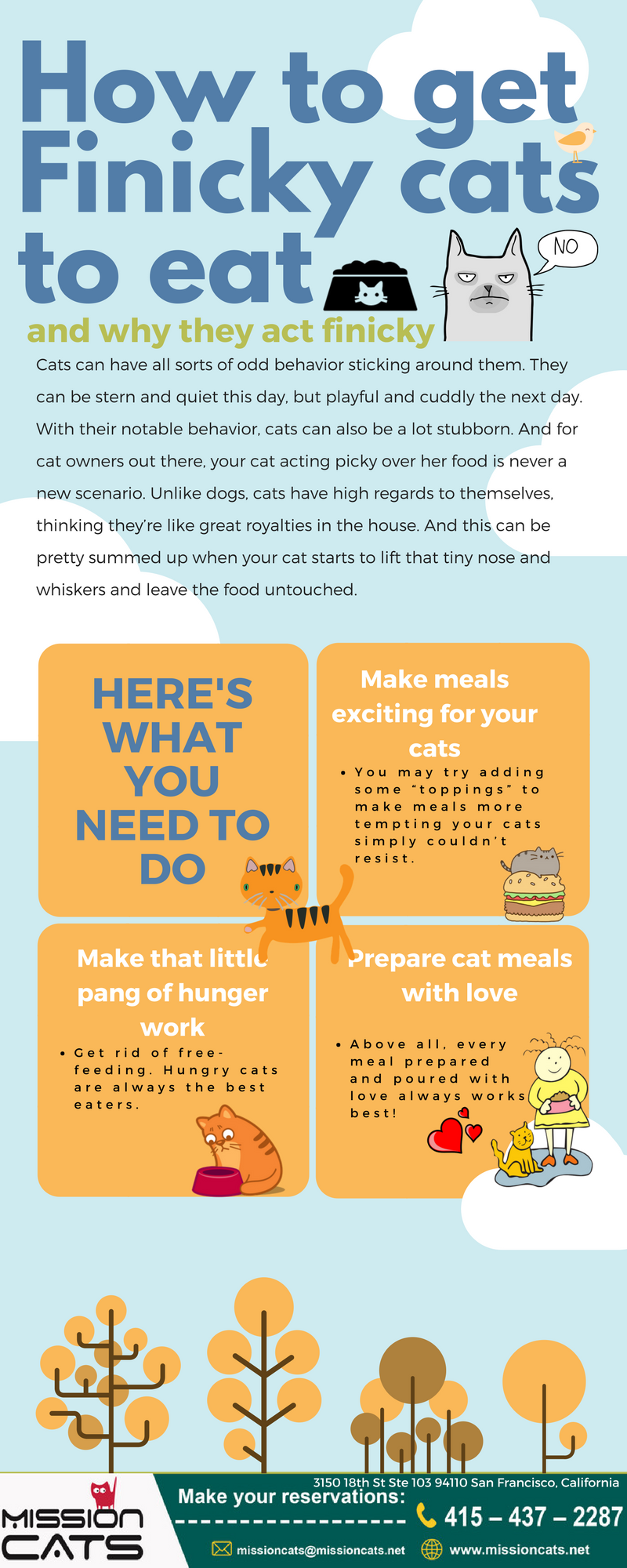 how to get finicky cats to eat