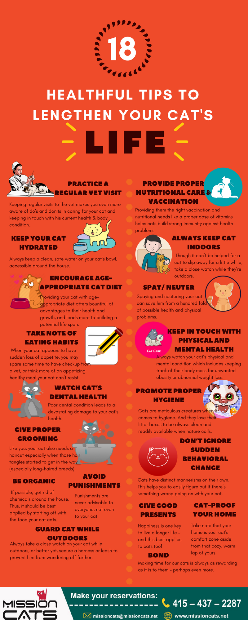 18 Tips To Help Lengthening Your Cat's Life