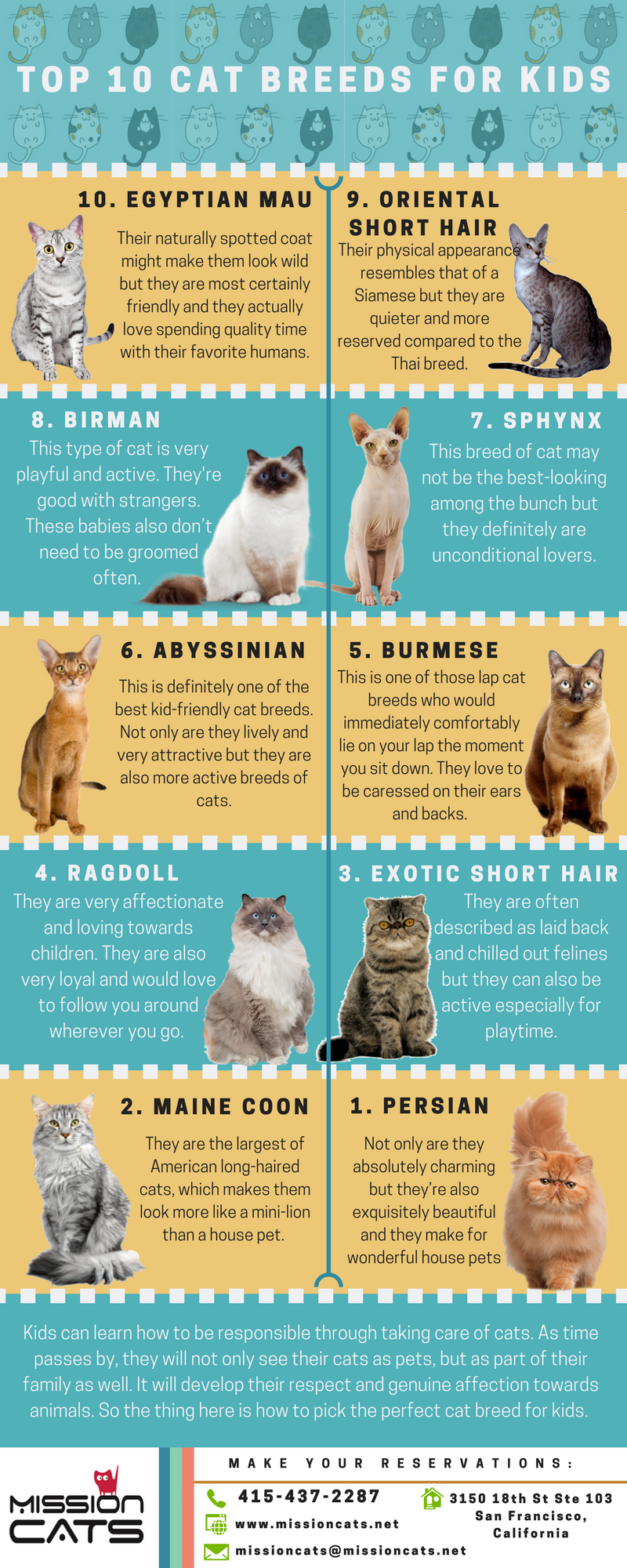 Top 10 Cat Breeds for Kids | Mission: Cats