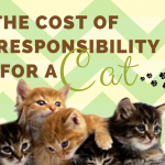 cost responsibility for a cat
